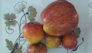 सेव का पोषक सिरका