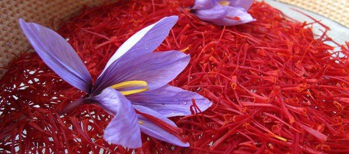 केसर kesar saffron spice ke gun labh fayde upyog price