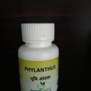 bhumi amla anwla capsules