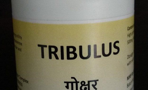 Tribulus   गोक्षुर